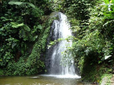 cascade du saut Gendarme, Martinique