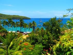 Grande Anse, Martinique @pink.turtle.blog