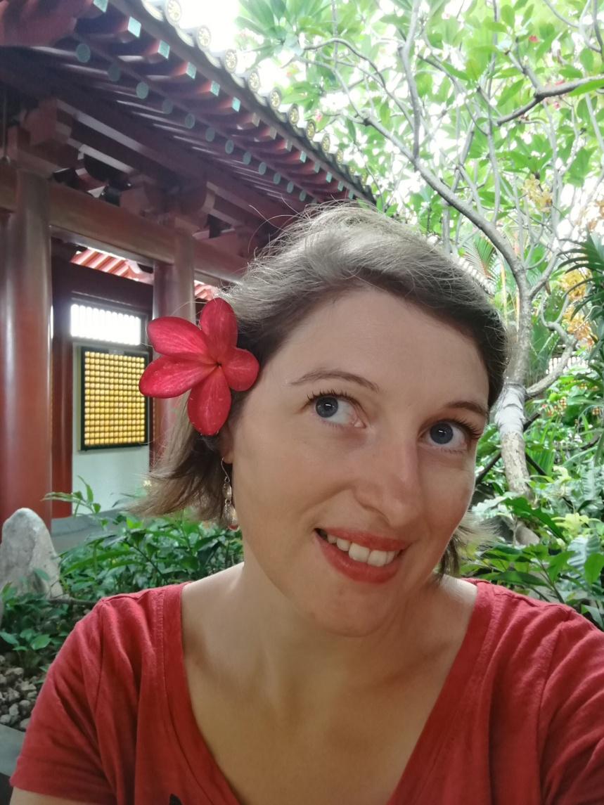 fleur de frangipanier (temple de la relique de la dent de bouddha)