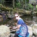 Bird Park 3 @pink turtle