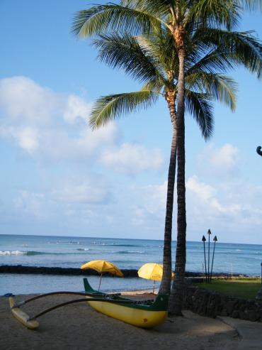 @pink.turtle.blog/ Waikiki beach (Hawaii, Oahu)