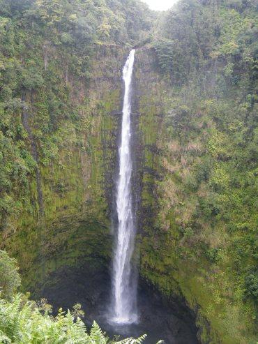 @pink.turtle.blog/ Big Island (Akaka falls, Hawaii)