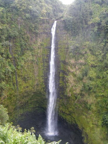 @pink.turtle.blog/ Big Island (Akaka falls, Hawaii)