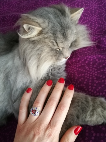 ongles et chat