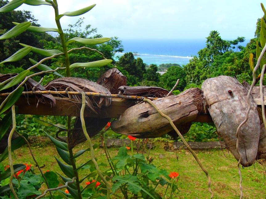 Le Jardin du roi (Mahé, Seychelles)
