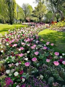 Jardin des plantes, Saint-Nazaire @pink.turtle.blog