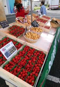 marché de Pertuischaud (Fraises BURBAN) @pink.turtle.blog