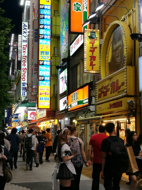 Maid, Akihabara, Tokyo/ @pink.turtle.blog