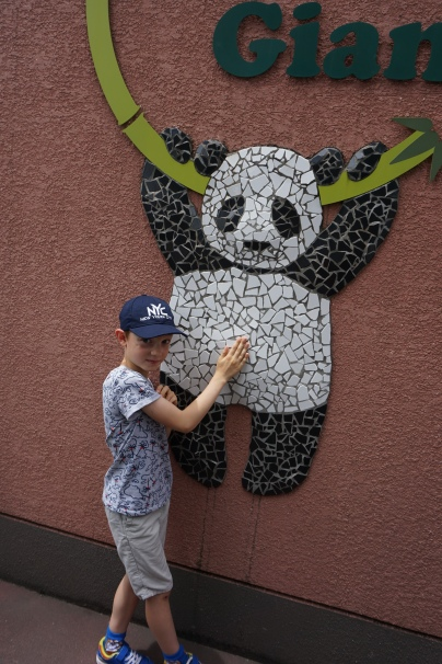 Zoo d'Ueno/@pink.turtle.blog