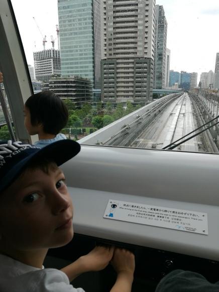 Yurikamome/ @pink.turtle.blog