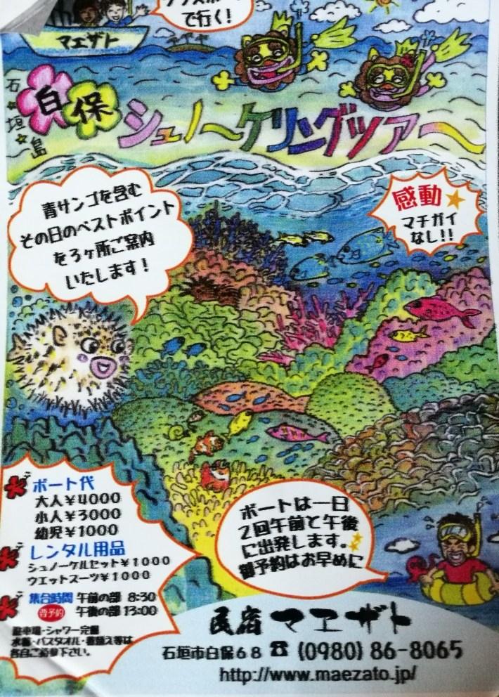 Petit affiche de Maezato/ @pink.turtle.blog