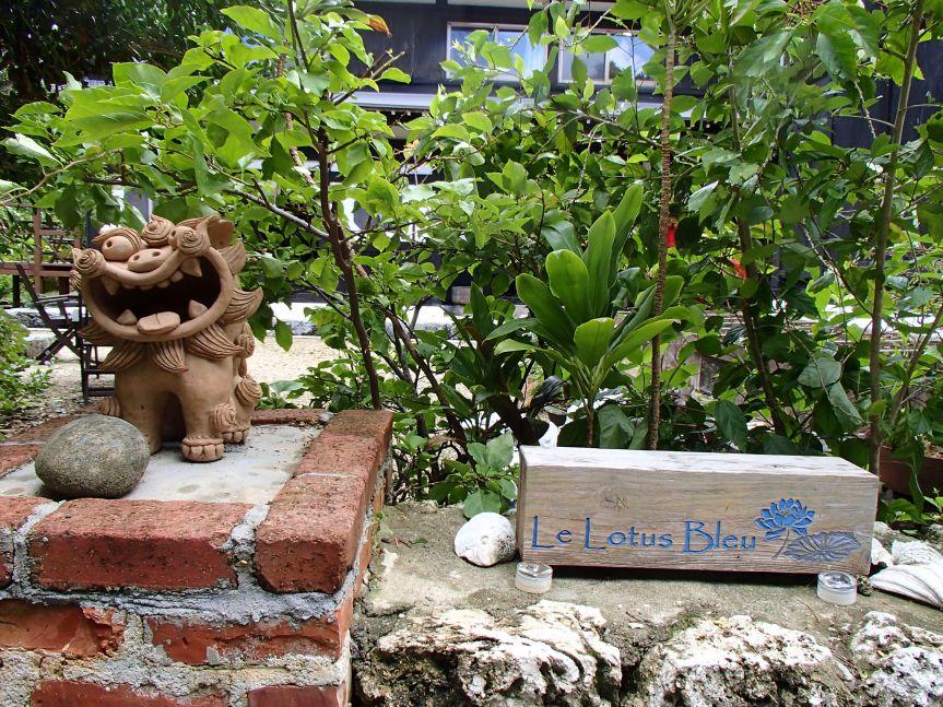 Le Lotus bleu/ @pink.turtle.blog