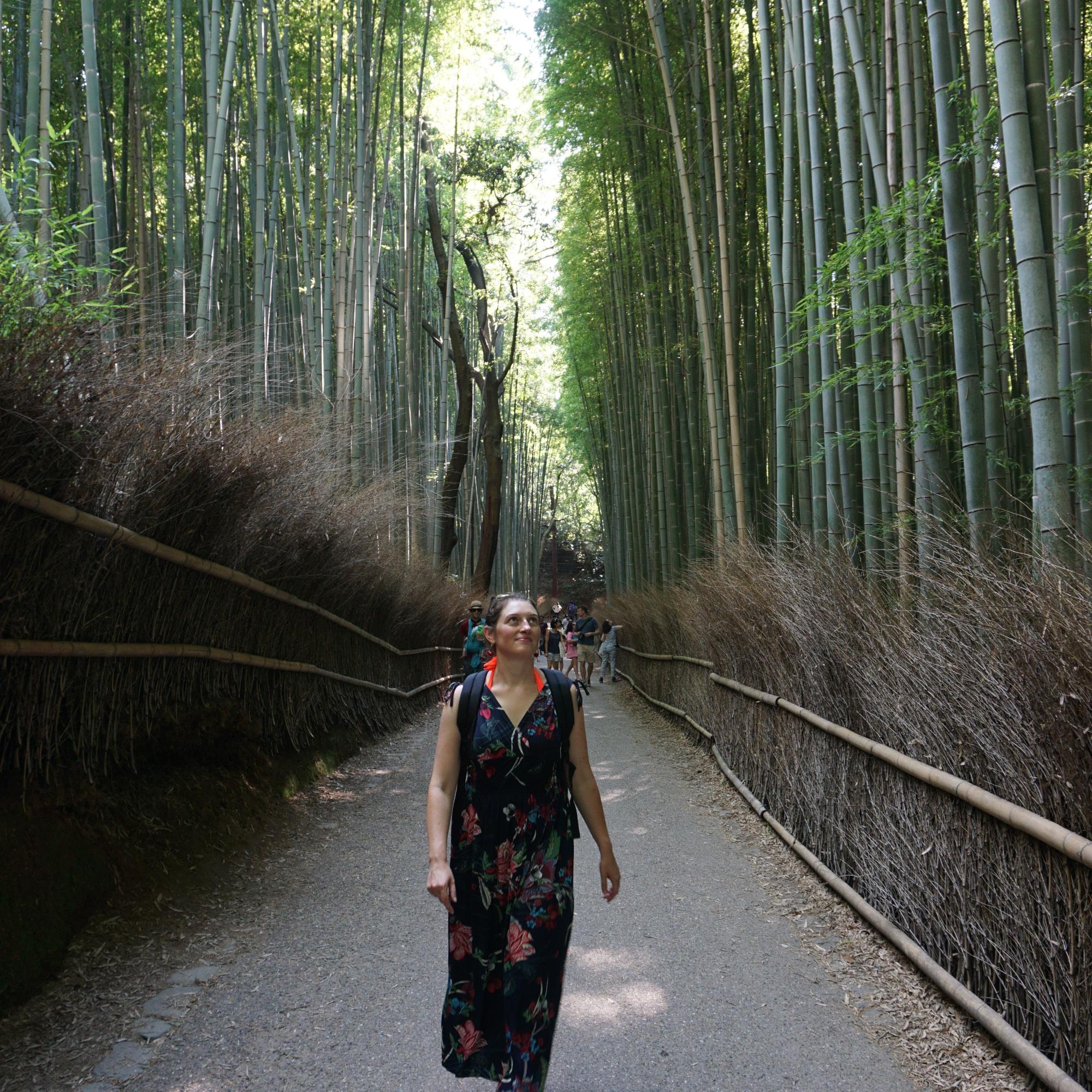 Forêt de bambous, Arashiyama @pink.turtle.blog