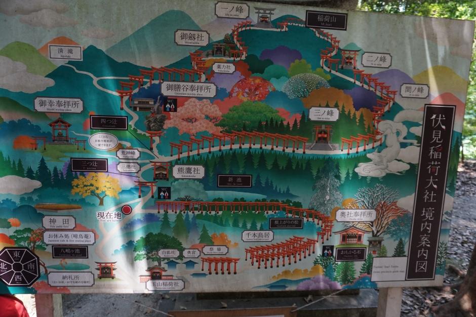 Randonnée du Fushimi Inari/ @pink.turtle.blog