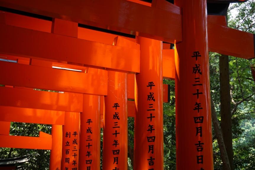 Fushimi Inari/ @pink.turtle.blog