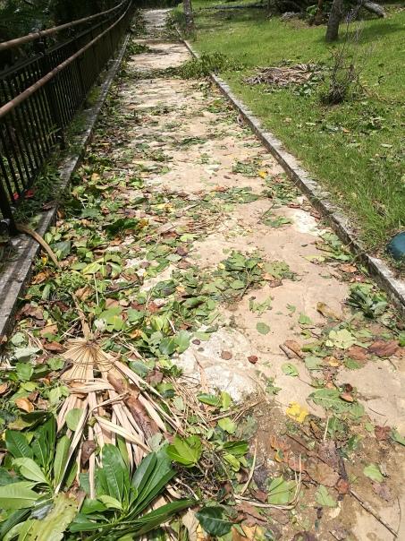Kabira Bay après le typhon/@pink.turtle.blog