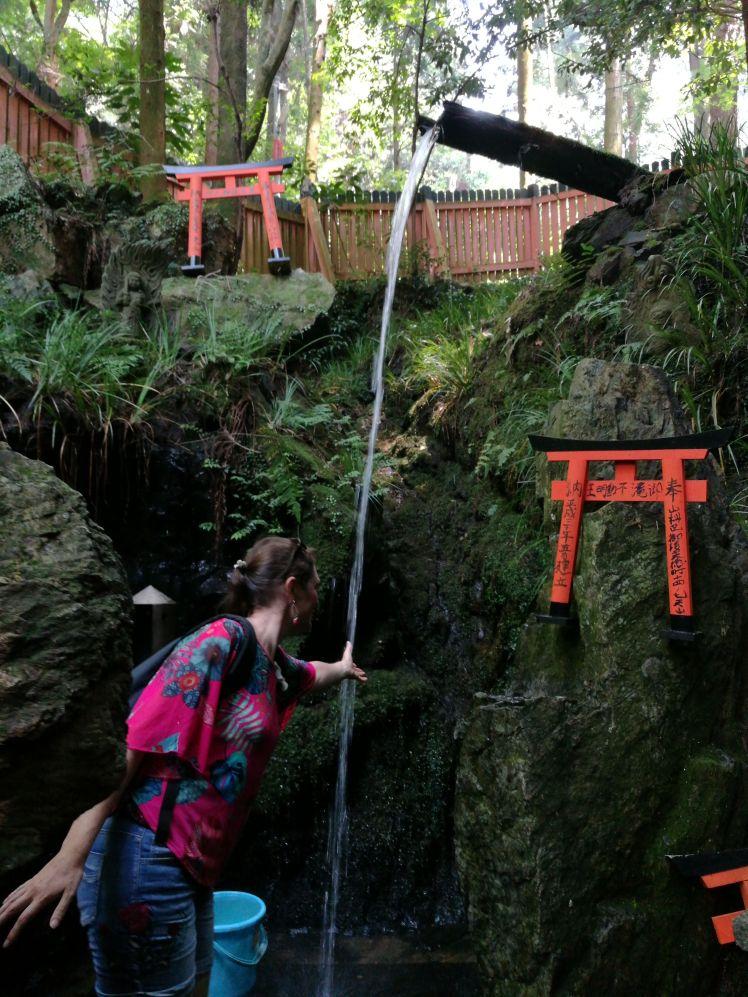 Cascade Fushimi Inari/ @pink.turtle.blog
