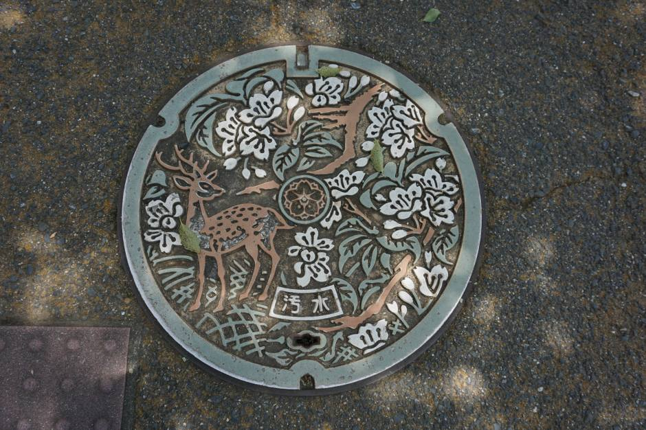 Jolie plaque d'égout/ @pink.turtle.blog