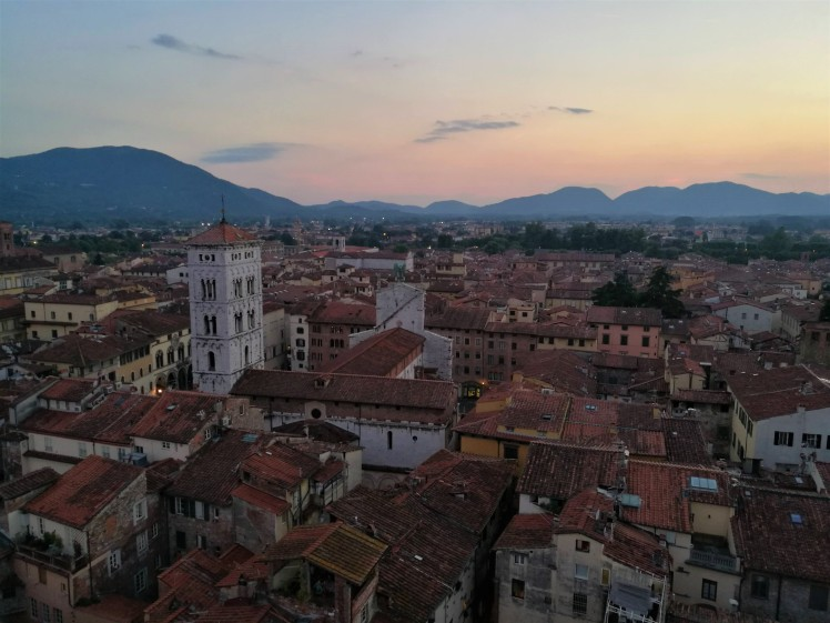 Tour delle Ore, Lucca/ @pink.turtle.blog