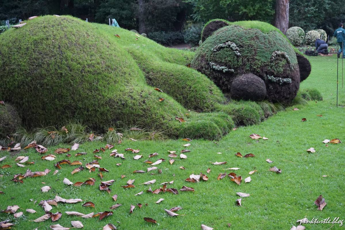Jardin des plantes, Nantes @pink.turtle.blog