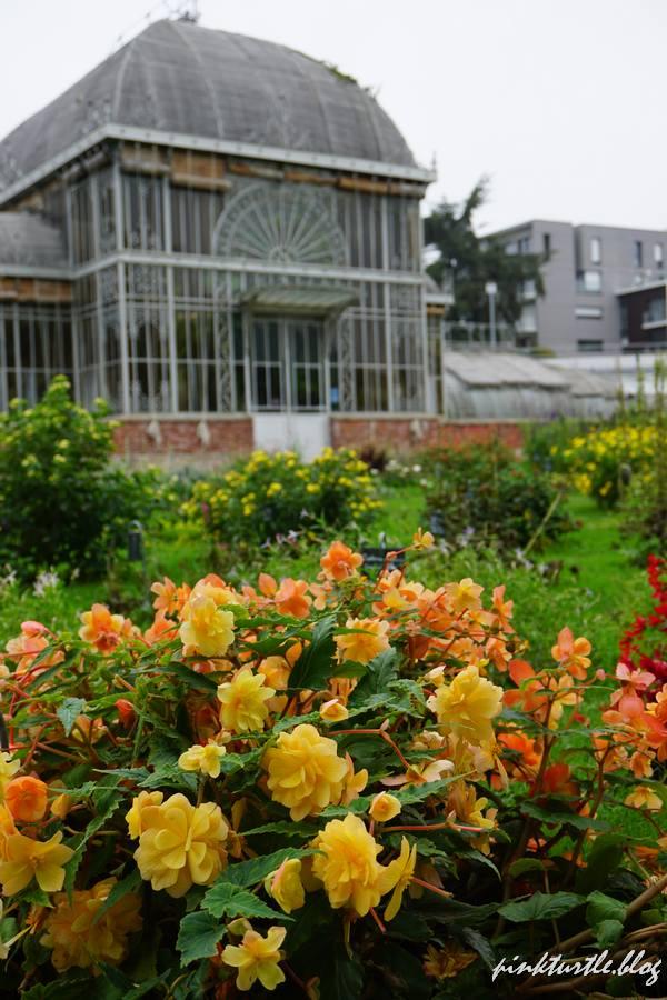 Serre tropicale, Jardin des plantes, Nantes @pink.turtle.blog