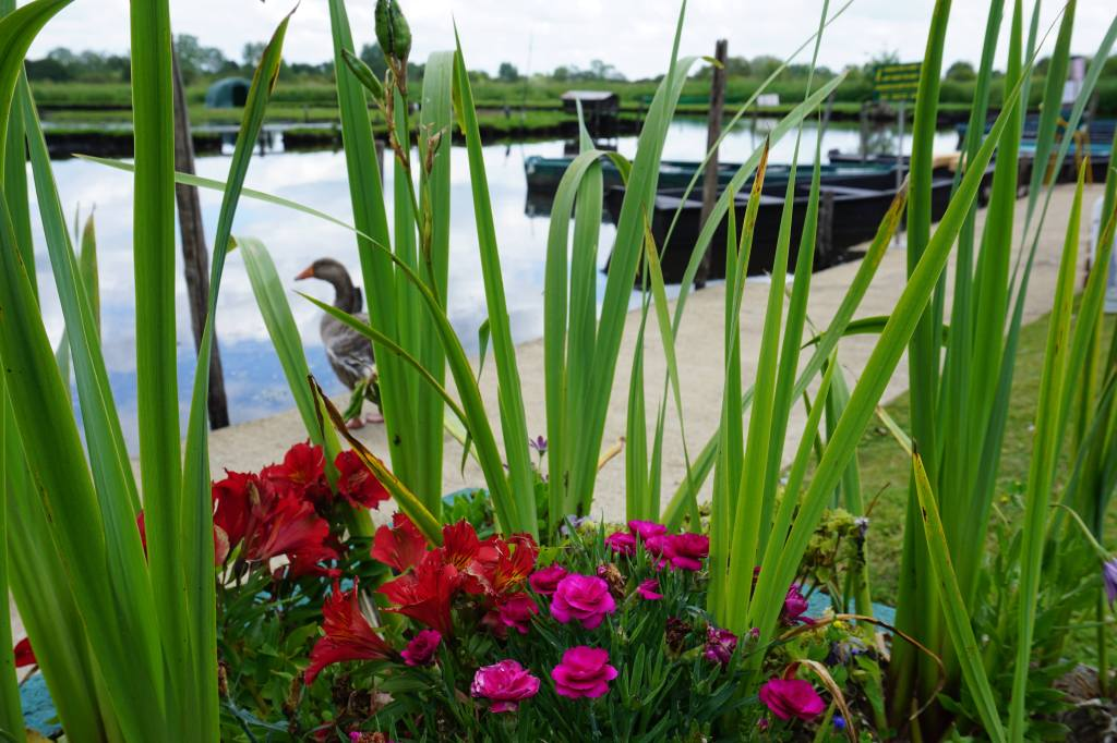 Brière, Chez Jacky et Chantal @pink.turtle.blog