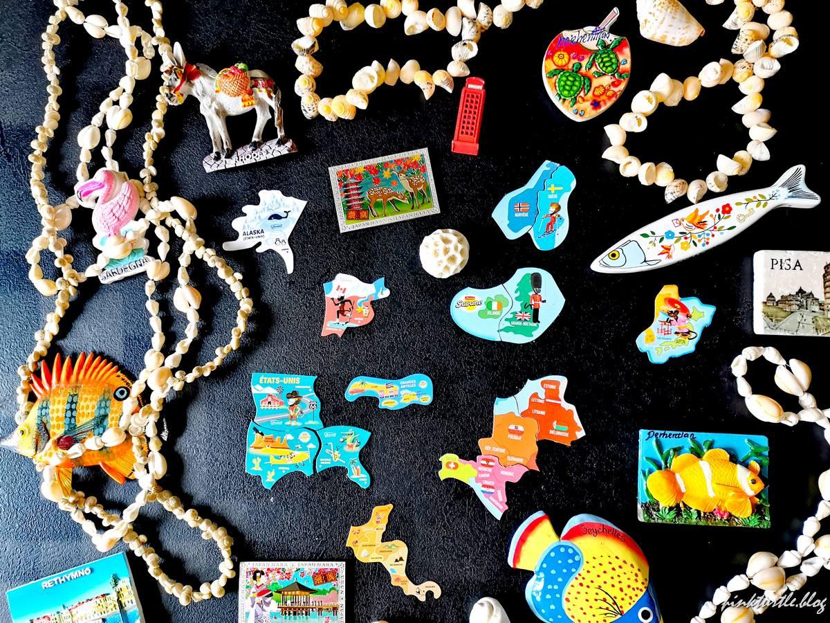 Magnets souvenirs et magnets Savane @pink.turtle.blog
