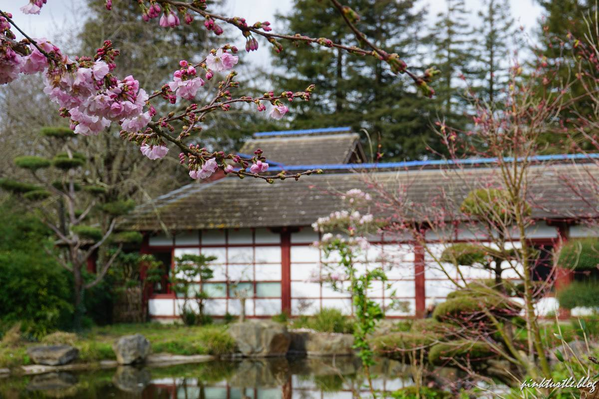 Jardin japonais de l'île de Versailles, Nantes @pink.turtle.blog