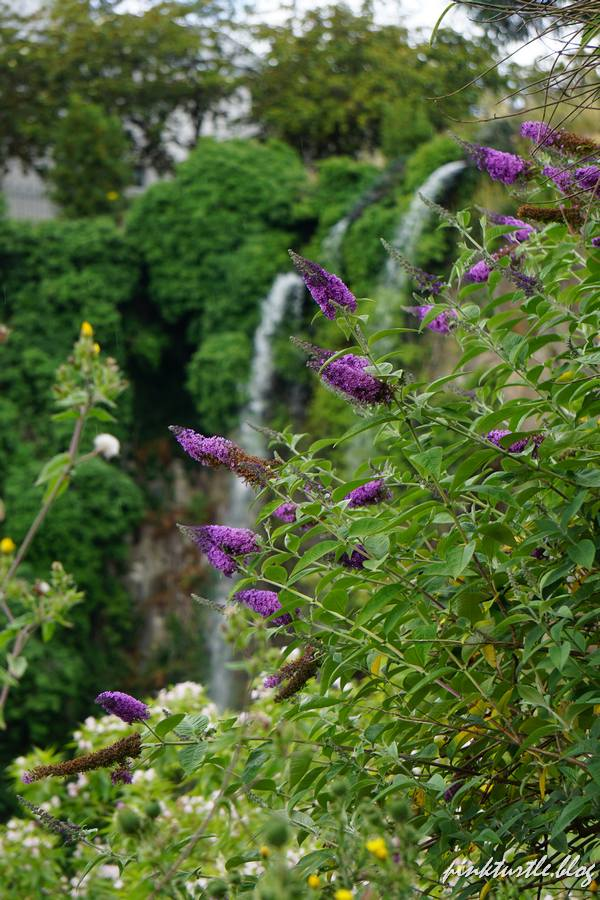 Cascade du jardin extraordinaire, Nantes @pinkturtle.blog